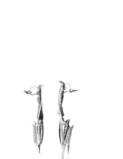ink shoots - Arisaema intermedium - ink 2016