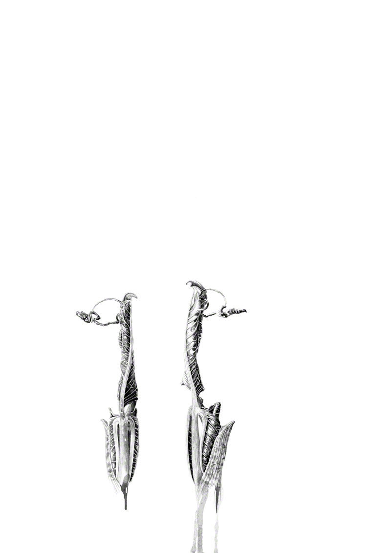 ink shoots - Arisaema intermedium - ink - original and prints available