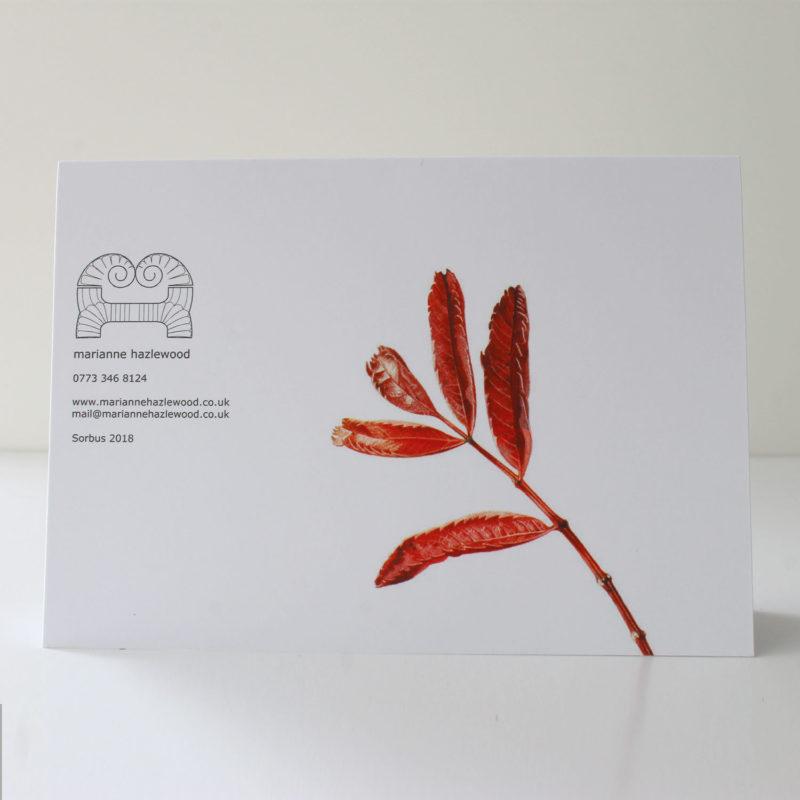 Sorbus card
