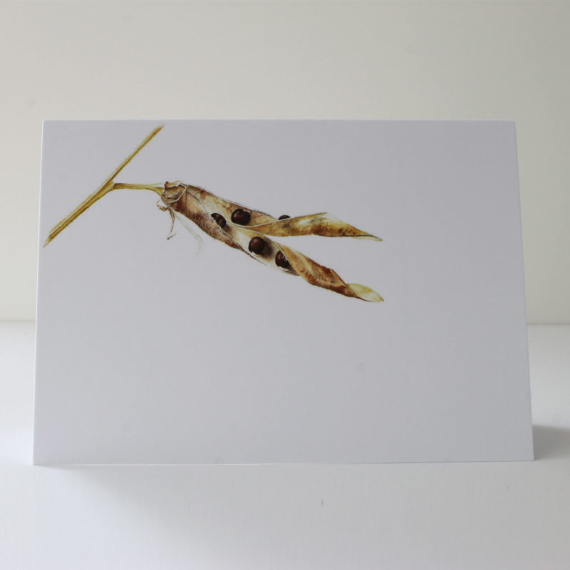 Sweet pea pod card