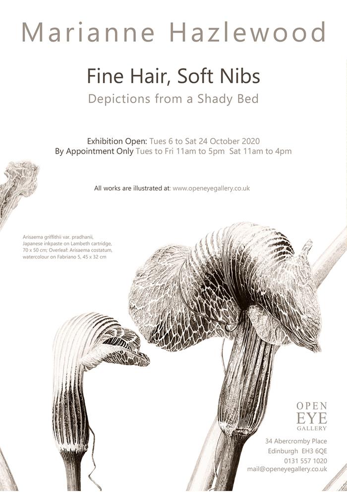 Marianne Hazlewood Open Eye Gallery Invite front - Arisaema griffithii var pradhanii