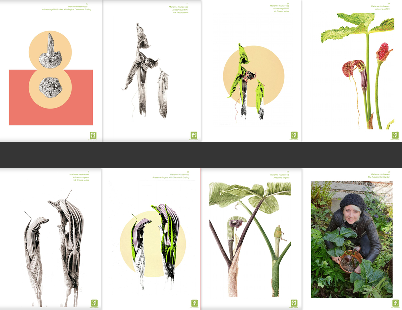Herbology News - The Energy Issue - art inserts by Marianne Hazlewood