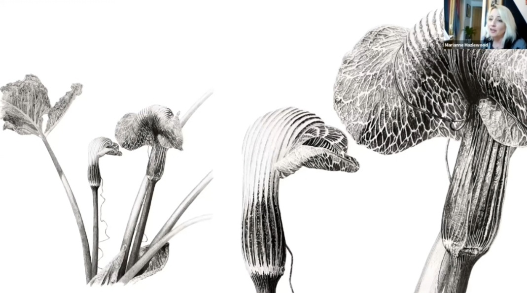 New Growth - ESBA's 9th annual exhibition and first online exhibition